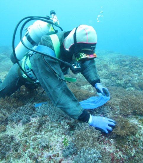 漁業資源現存量調査 ~貝類~